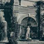 Museo del macellum
